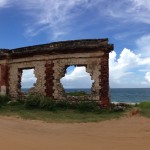 the ruins wilderness puerto rico