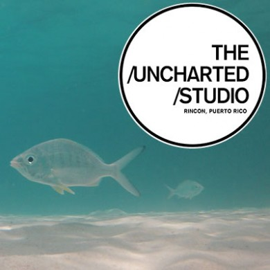 Seaglass Swimwear + The Uncharted Studio